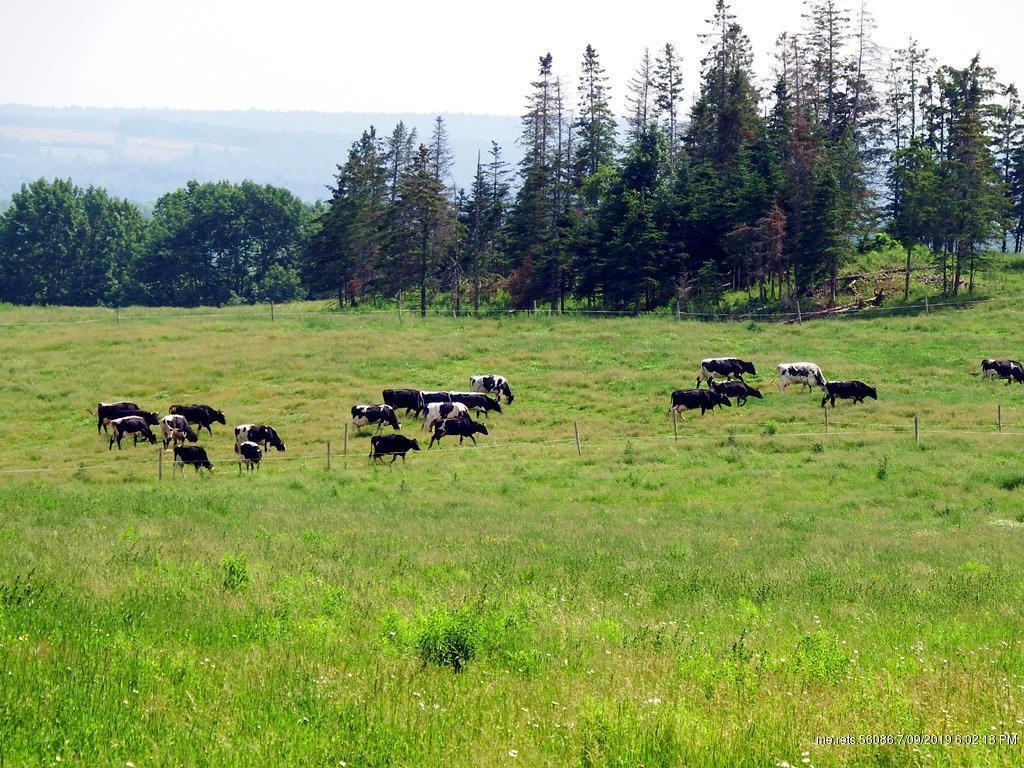Farm For Sale, Hodgdon Maine